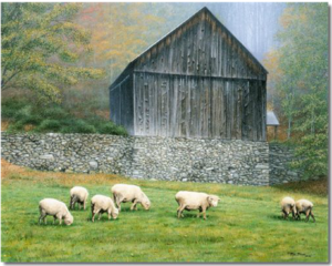 bethel-mountain-sheep-farm